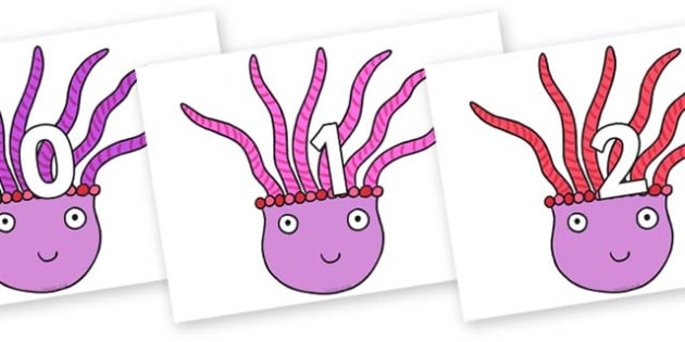 Numbers 0-100 on Anemone to Support Teaching on Sharing a Shell - 0-100, foundation stage numeracy, Number recognition, Number flashcards, counting, number frieze, Display numbers, number posters