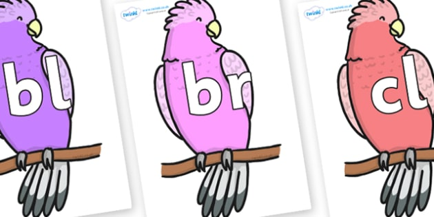 Initial Letter Blends on Galah - Initial Letters, initial letter, letter blend, letter blends, consonant, consonants, digraph, trigraph, literacy, alphabet, letters, foundation stage literacy