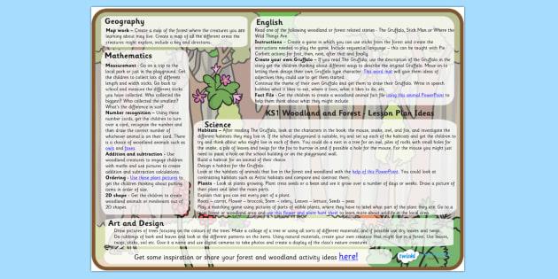 Forest and Woodland Lesson Plan Ideas KS1 - forest, woodland, lesson plan, lesson plan idea, lesson ideas, lesson planning, teaching plan, KS1 plan