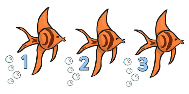 Numbers 0-20 on Angel Fish - Fish, Under the sea, Foundation Numeracy, Number recognition, Number flashcards, counting, sea, seaside, display, posters, water, tide, fish, sea creatures, shark, whale, marine, dolphin, starfish, waves, sand