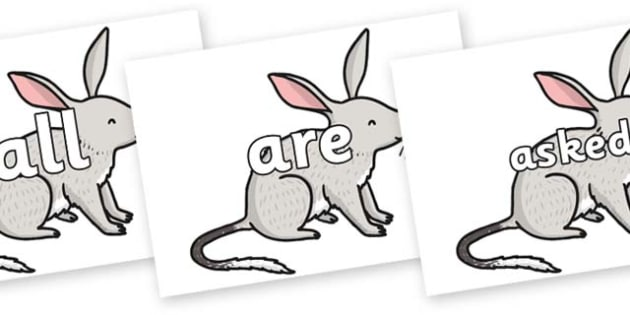 Tricky Words on Bilby - Tricky words, DfES Letters and Sounds, Letters and sounds, display, words