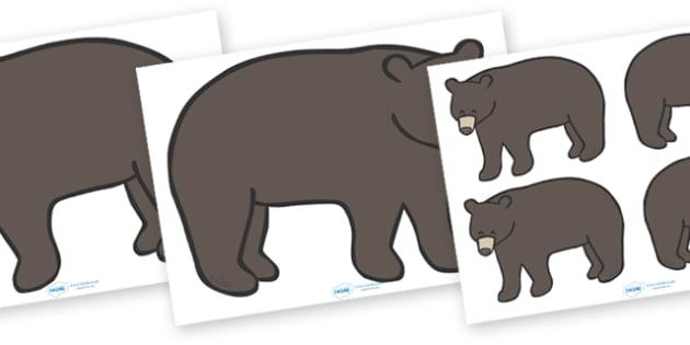Editable Black Bear (A4) - Black Bear, bear, black, A4, bears, forest, animal, animals, wild, dark