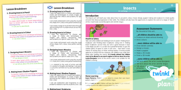 Art: Insects LKS2 Planning Overview CfE