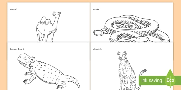 desert animals coloring worksheet activity sheets desert animals. Black Bedroom Furniture Sets. Home Design Ideas