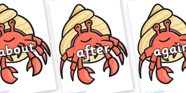 KS1 Keywords on Hermit Crabs - KS1, CLL, Communication language and literacy, Display, Key words, high frequency words, foundation stage literacy, DfES Letters and Sounds, Letters and Sounds, spelling