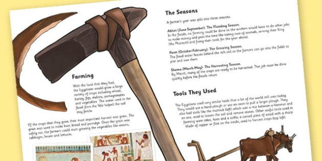 The Ancient Egyptians Farming Information Print Out - egypt, KS2