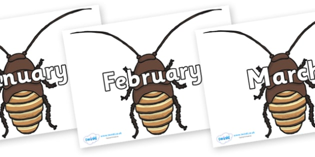 Months of the Year on Cockroach - Months of the Year, Months poster, Months display, display, poster, frieze, Months, month, January, February, March, April, May, June, July, August, September