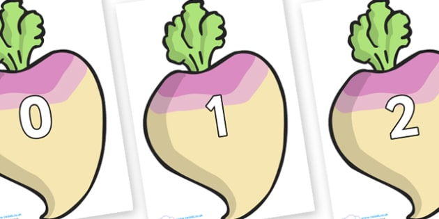Numbers 0-31 on Turnips - 0-31, foundation stage numeracy, Number recognition, Number flashcards, counting, number frieze, Display numbers, number posters