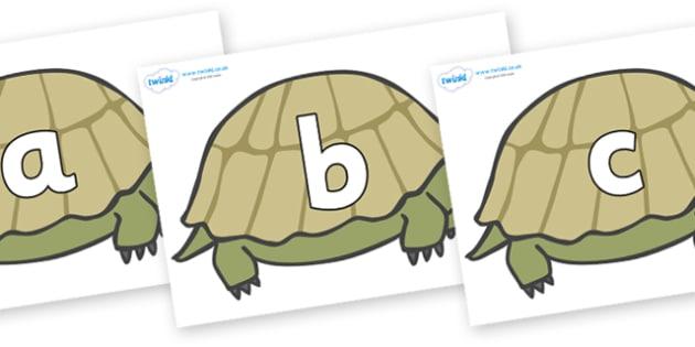 Phoneme Set on Tortoises - Phoneme set, phonemes, phoneme, Letters and Sounds, DfES, display, Phase 1, Phase 2, Phase 3, Phase 5, Foundation, Literacy