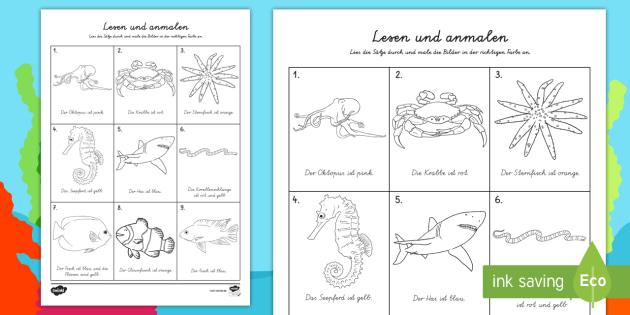 NEW * Lebensraum Meer lesen und anmalen Arbeitsblatt