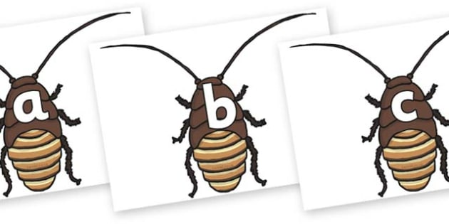 Phase 2 Phonemes on Cockroach - Phonemes, phoneme, Phase 2, Phase two, Foundation, Literacy, Letters and Sounds, DfES, display