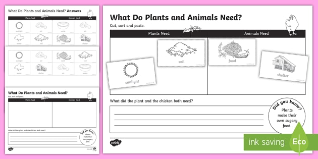 Plants and Animals Needs Activity Sheet - Australian Curriculum, Biological sciences, animal needs, plant needs, needs, needs and wants, chick