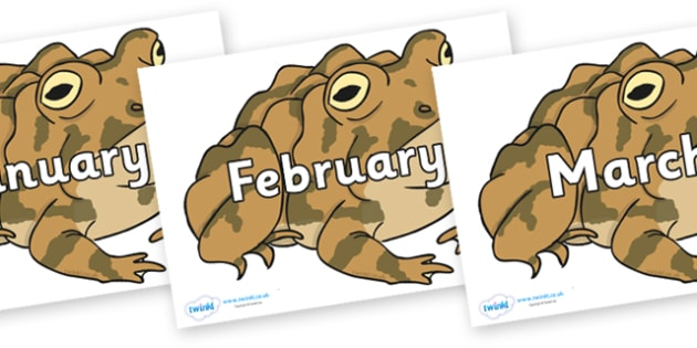 Months of the Year on Toad - Months of the Year, Months poster, Months display, display, poster, frieze, Months, month, January, February, March, April, May, June, July, August, September
