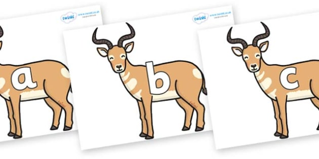 Phase 2 Phonemes on Antelopes - Phonemes, phoneme, Phase 2, Phase two, Foundation, Literacy, Letters and Sounds, DfES, display
