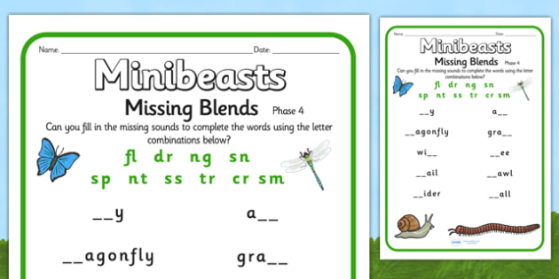 Minibeast Phase 4 Missing Sounds Worksheet - minibeasts, phase 4
