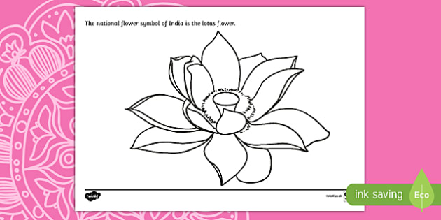 Indian Lotus Flower Colouring Page