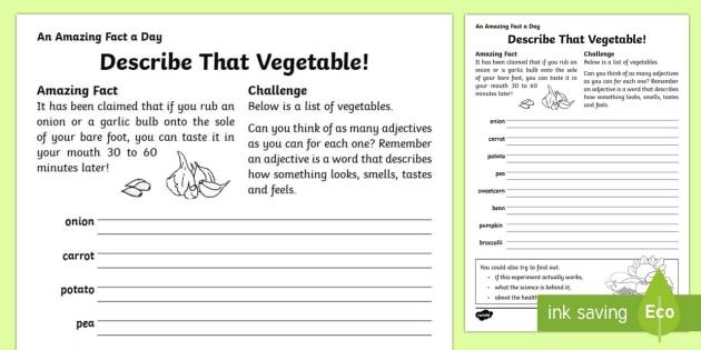 Describe That Vegetable Worksheet / Activity Sheet