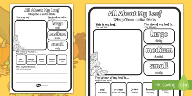 All about my leaf worksheet / activity sheet English/Polish