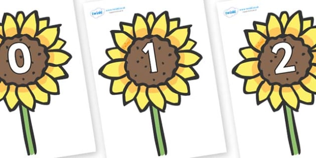 Numbers 0-31 on Sunflowers - 0-31, foundation stage numeracy, Number recognition, Number flashcards, counting, number frieze, Display numbers, number posters