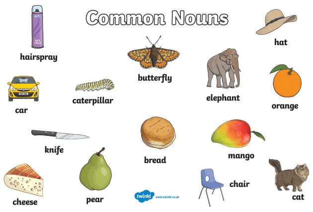 What is a Common Noun? - Answered - Twinkl Teaching Wiki