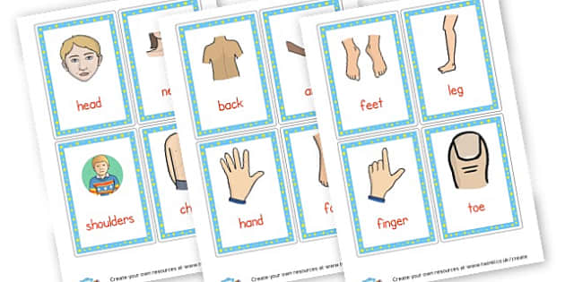 Body Parts Flash Cards - Ourselves & All About Me Primary