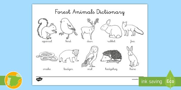 New A1 Diccionario Para Colorear Animales Del Bosque En Inglés