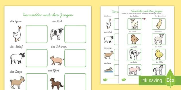 Tiermütter und ihre Jungen Arbeitsblatt: Wort- und Bild Memory