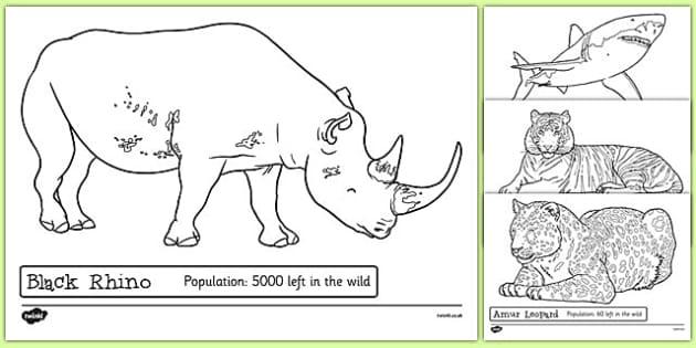 endangered animals colouring sheets endangered animals. Black Bedroom Furniture Sets. Home Design Ideas