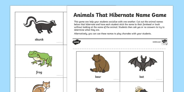 Animals That Hibernate  Grade 4 Name Game (teacher made)