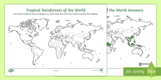 tropical rainforests around the world worksheet    activity