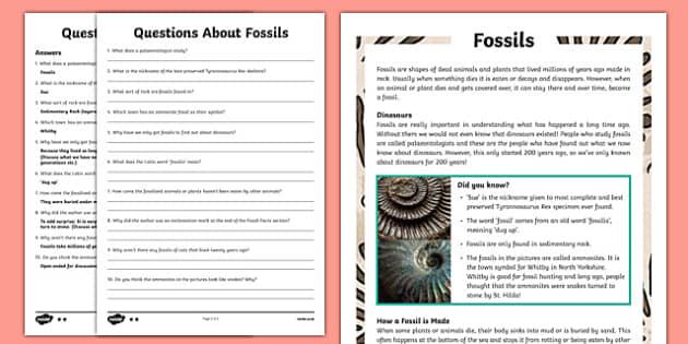 year 3 reading comprehension pdf
