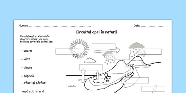 circuitul apei 238n natur� fiș� de lucru circuitul apei