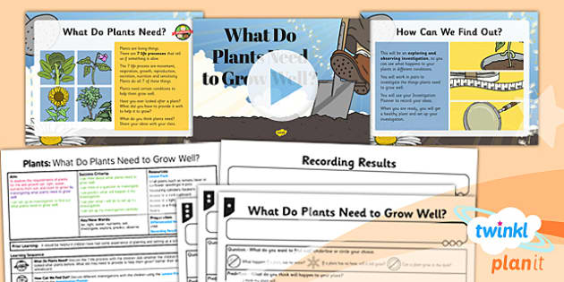 Science: Plants: What do Plants Have to Grow Well? - Year 3