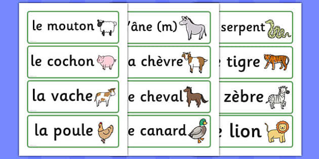 free french animal word cards france languages eal animals esl. Black Bedroom Furniture Sets. Home Design Ideas