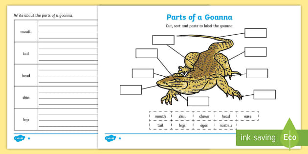Translations Into Italian: Parts Of A Goanna Differentiated Worksheet / Worksheets