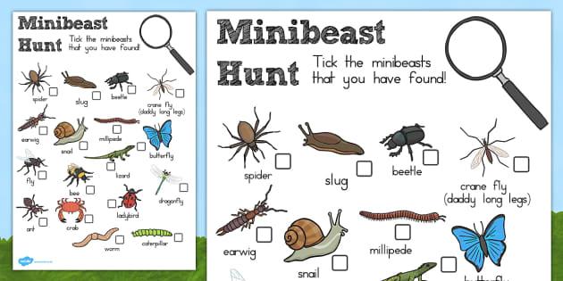 minibeast hunt sheet