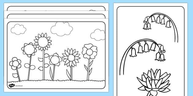 Flowers Colouring Sheets Colouring Sheets Flowers Colouring Sheets