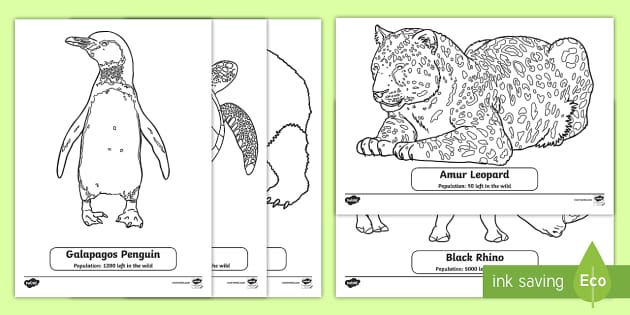 Endangered Animals Coloring Sheets (teacher made)