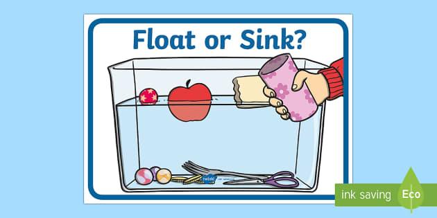 Float or Sink? Poster (teacher made)