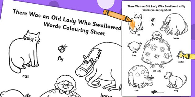 PATTIES CLASSROOM: There Was an Old Lady Who Swallowed a Fly ...