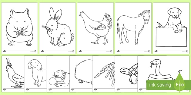 Information And Coloring Sheet About Endangered Species For Earth Day as well Puppy Dog Coloring Pages moreover Img moreover Big Islcollective Worksheets Elementary A Elementary School Reading Writing Animals Picture Descripti Horses Worksheet Ee C D F as well Image Width   Height   Version. on horses worksheets for kindergarten