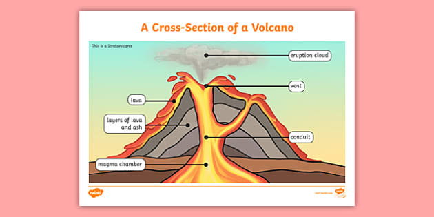 Volcano Layers Cross Section Display Poster Teacher Made