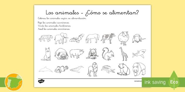 Imagenes De Animales Carnivoros Para Colorear: Animales Herbivoros Dibujos Para Colorear