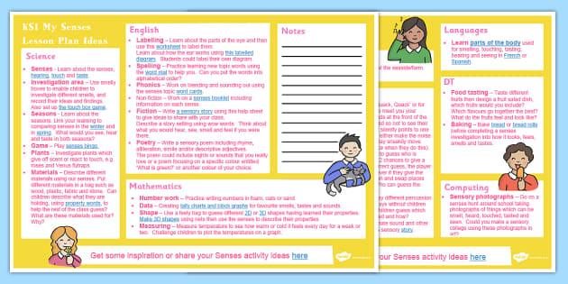 My Senses KS1 Lesson Plan Ideas - lesson plan, ks1, senses