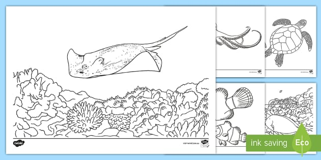 au t 2928 great barrier reef colouring pages ver 2