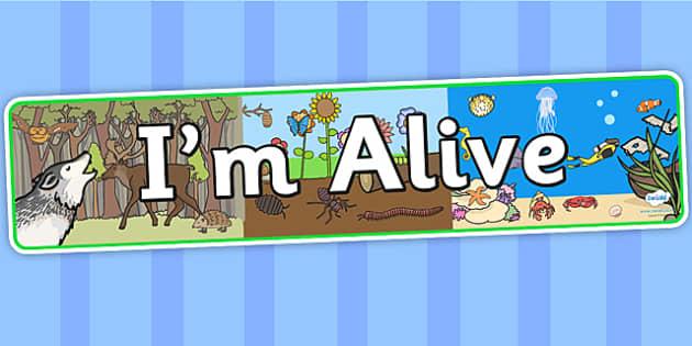 Im Alive Display Banner (teacher made)