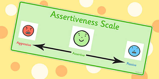 T S 1163 Assertiveness Scale