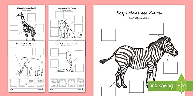new k rperteile afrikanischer tiere zum beschriften arbeitsbl tter. Black Bedroom Furniture Sets. Home Design Ideas
