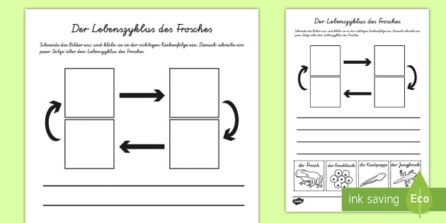 Atemberaubend Lebenszyklus Einer Anlage Ks2 Arbeitsblatt Bilder ...
