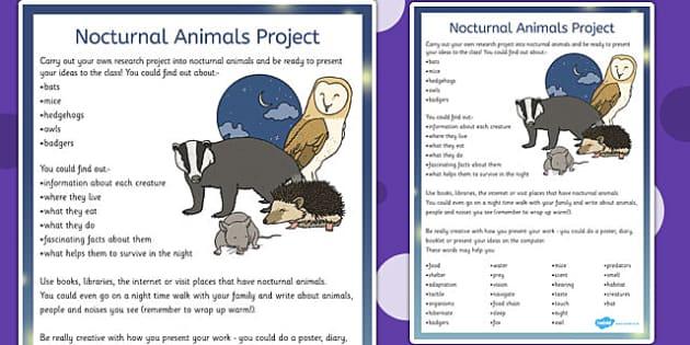 nocturnal animal list uk